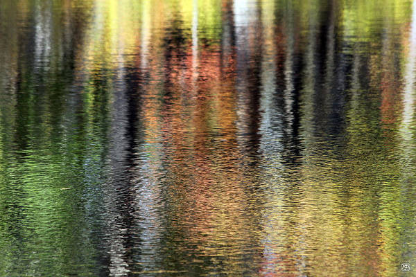 Photograph - Messalonskee Reflection 2 by John Meader