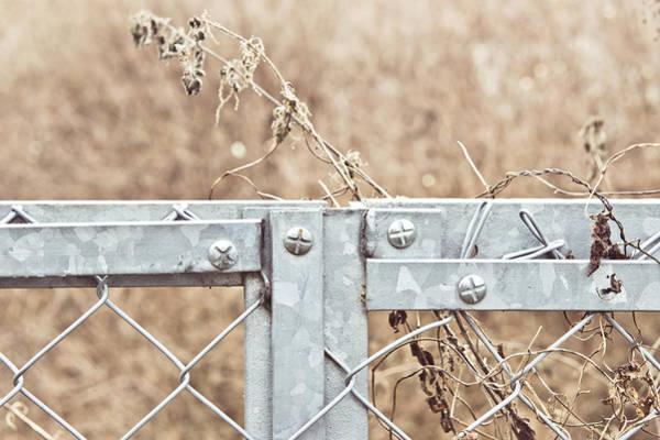 Boundaries Wall Art - Photograph - Metal Fence by Tom Gowanlock