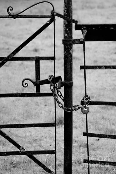 Rusty Chain Wall Art - Photograph - Metal Gate by Svetlana Sewell