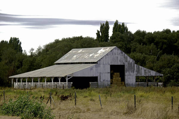 Photograph - Metal Hay Barn by William Havle