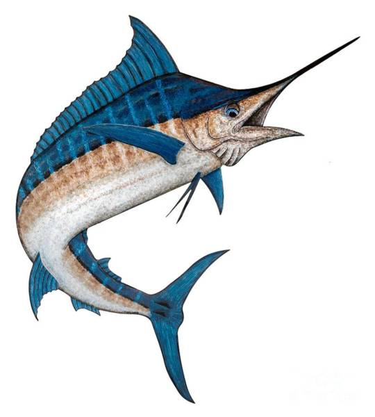 Wall Art - Painting - Metal Marlin Realistic by Carol Lynne