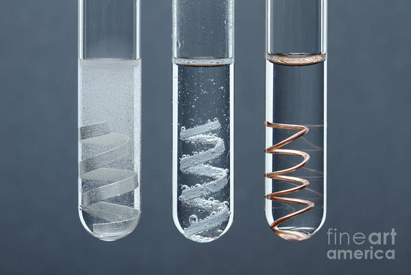 Alkaline Earth Metals Wall Art - Photograph - Metal Reactivity by GIPhotoStock