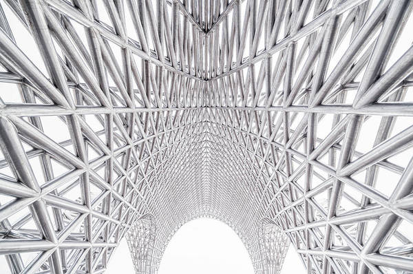 Photograph - Metallic Mesh by Copyright Xinzheng. All Rights Reserved.