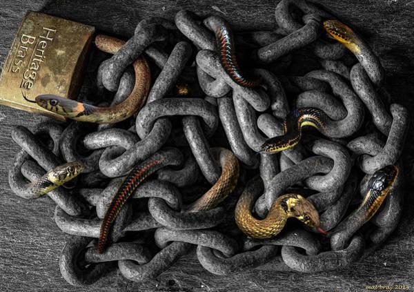 Chain Link Photograph - Metalmorphosisssss by Mal Bray