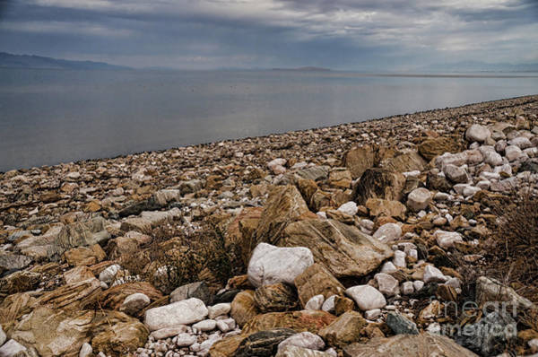 Photograph - Metamorphic Rock Beach  by Donna Greene
