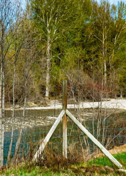 Photograph - Methow River Springtime by Omaste Witkowski