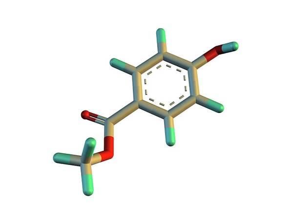 Preservative Wall Art - Photograph - Methylparaben Molecule by Alfred Pasieka/science Photo Library