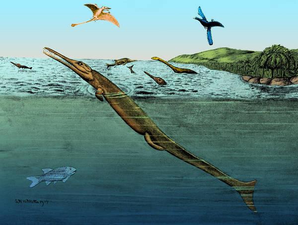 Photograph - Metriorhynchus, Jurassic Marine Reptile by Science Source