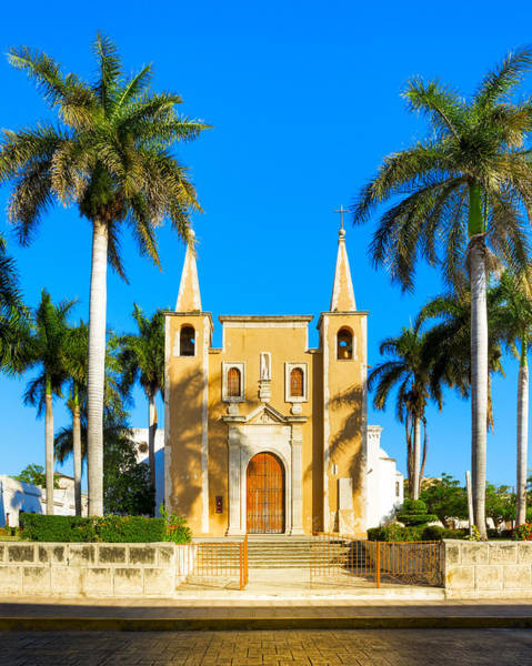 Photograph - Mexican Church Sheltered By Palm Trees by Mark E Tisdale
