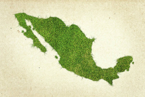 Mexico City Photograph - Mexico Grass Map by Aged Pixel