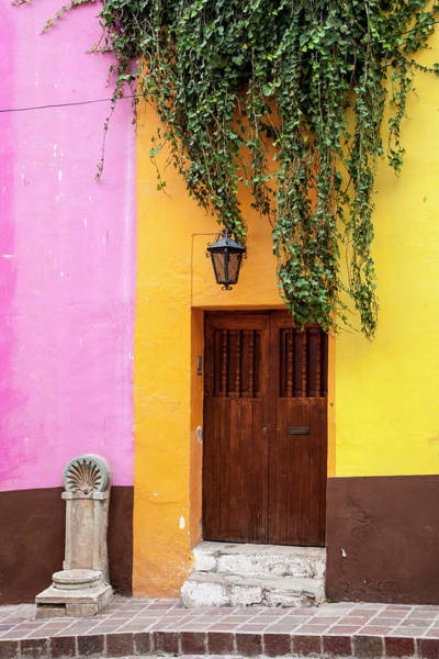 Wall Art - Photograph - Mexico, Guanajuato, Door And Fountain by Hollice Looney