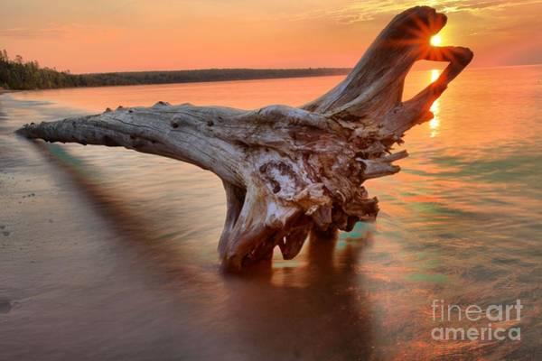 Photograph - Meyers Beach Driftwood by Adam Jewell