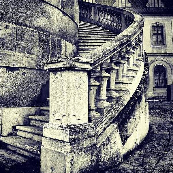Building Wall Art - Photograph - #mgmarts #architecture #castle #steps by Marianna Mills