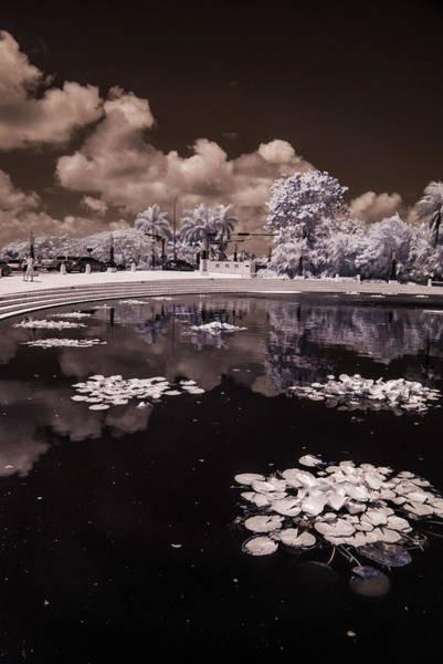 Photograph - Miami Beach Lake by Ellie Perla