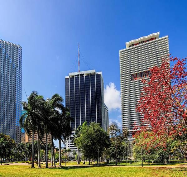 Aspect Wall Art - Photograph - Miami Cityscape   by Rudy Umans