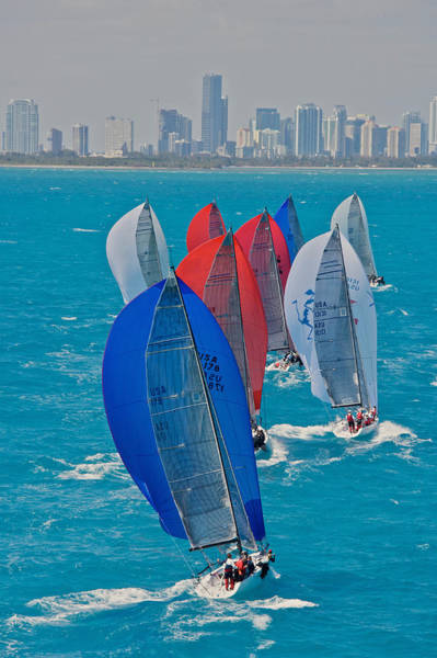 Photograph - Miami Sail Skyline by Steven Lapkin