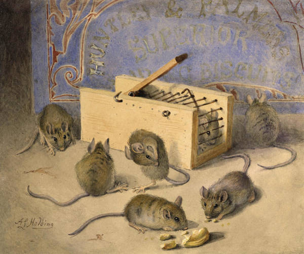 Louise Wall Art - Painting - Mice And Huntley Palmers Superior Biscuits by Agnes Louise Holding