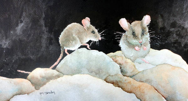 Mice On The Rocks Art Print