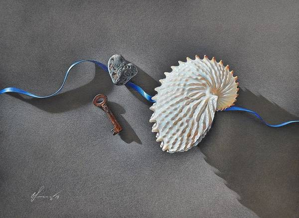 Drawing - Michael's Shell by Elena Kolotusha