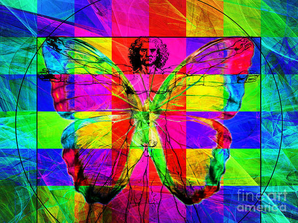 Photograph - Leonardo Da Vinci Butterfly Man Dsc2969 V1 by Wingsdomain Art and Photography