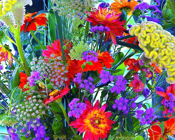Photograph - Mid August Bouquet by Byron Varvarigos