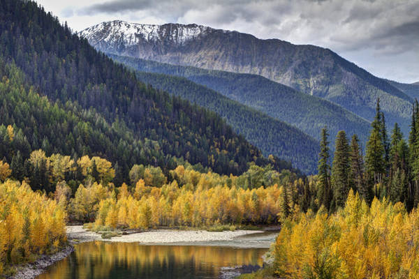 Montana Photograph - Middle Fork Brillance  by Mark Kiver