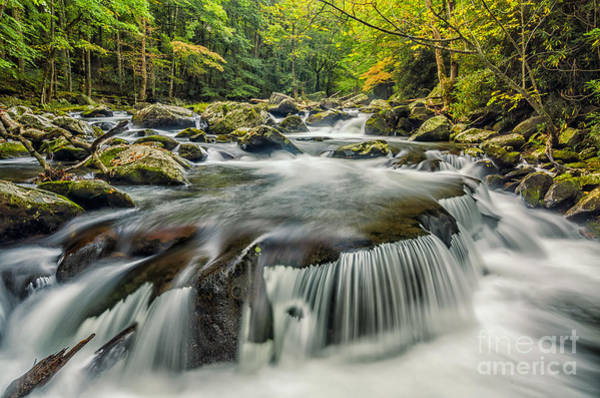 Wall Art - Photograph - Middle Prong Cascade by Anthony Heflin
