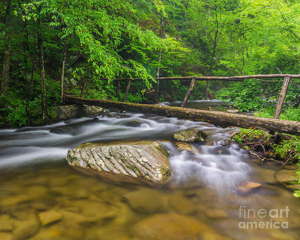 Wall Art - Photograph - Middle Prong Foot Bridge by Anthony Heflin