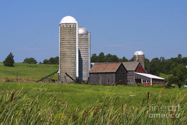 Photograph - Middlebury Vermont Barn by Deborah Benoit