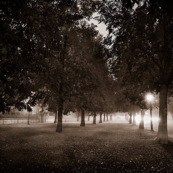 Wny Wall Art - Photograph - Midnight In The Garden Of Good And Evil by Chris Bordeleau