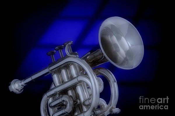 Photograph - Midnight Trumpet by M K Miller