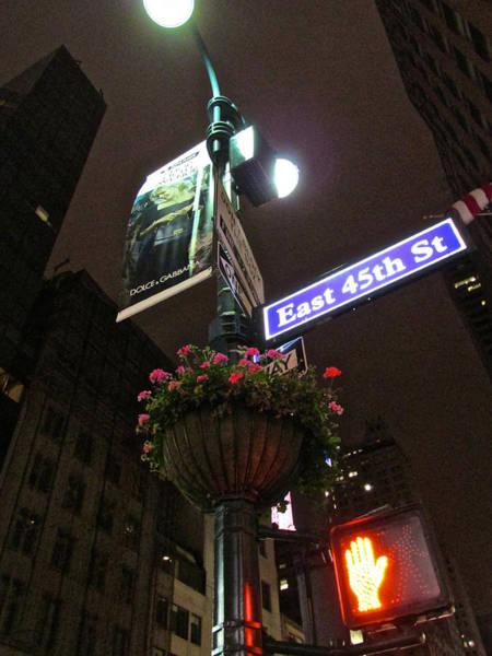 Photograph - Midtown Lamp by Steven Lapkin