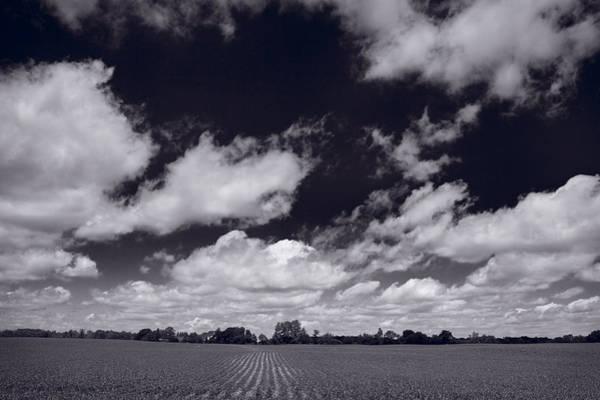 Lake Geneva Photograph - Midwest Corn Field Bw by Steve Gadomski