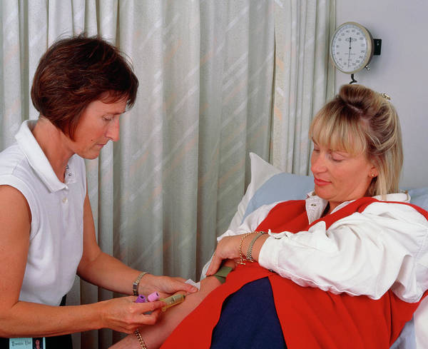 Wall Art - Photograph - Midwife Taking Blood Sample From Pregnant Woman by Simon Fraser/science Photo Library