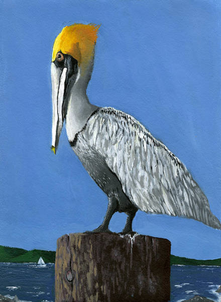 White Feathers Painting - Mighty Observer By Joseph Dickinson by California Coastal Commission