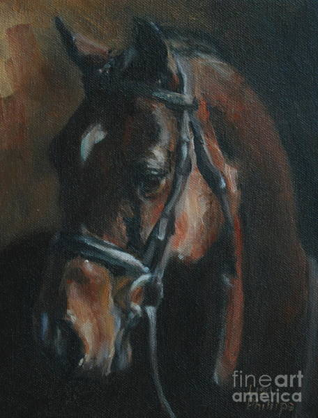 Horse Head Wall Art - Painting - Miko by Lisa Phillips Owens