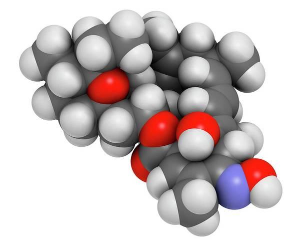 3d Model Photograph - Milbemycin Oxime Antiparasitic Drug by Molekuul