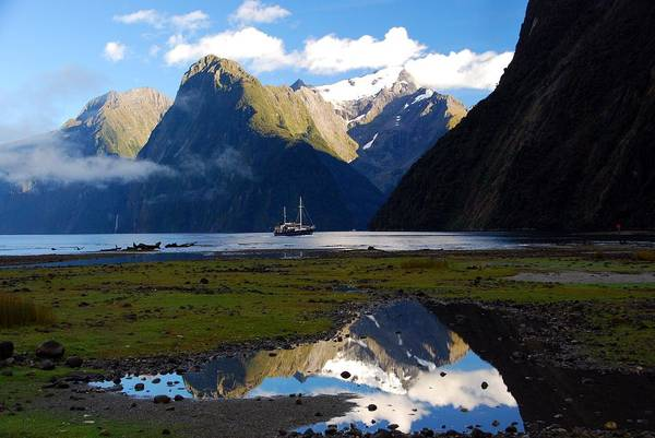 Photograph - Milford Sound by Cascade Colors