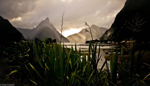 Photograph - Milford Sound by Chris Cousins