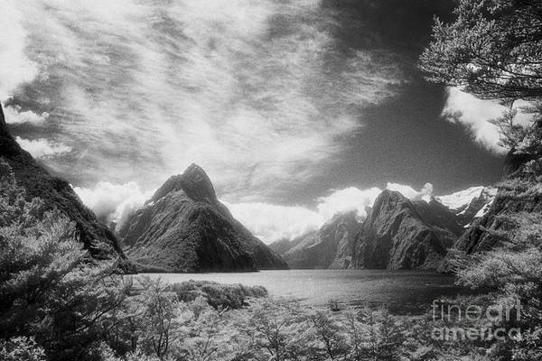 Milford Photograph - Milford Sound Fiordland I by Colin and Linda McKie