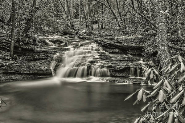 Photograph - Mill Creek Falls by Dan Friend
