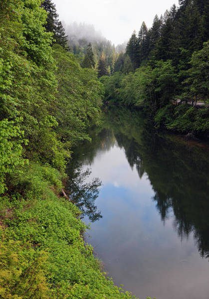 Douglas County Wall Art - Photograph - Mill Creek Reflection by Step2626