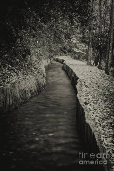 Photograph - Mill Sluice by David Waldrop