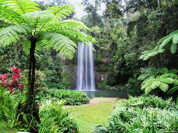 Atherton Tablelands Photograph - Millaa Millaa Falls by Linda Lees