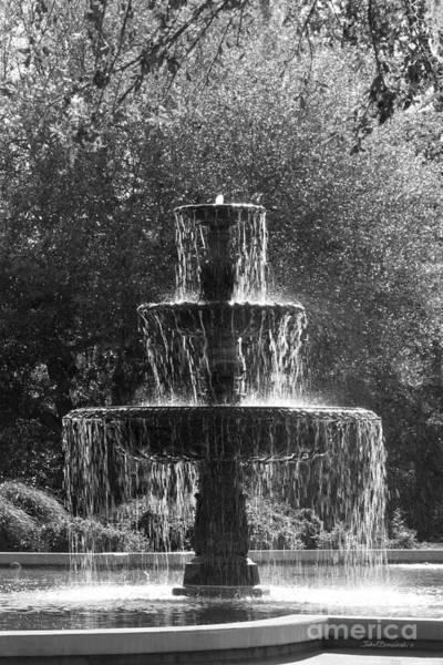 Photograph - Belhaven University Fountain by University Icons