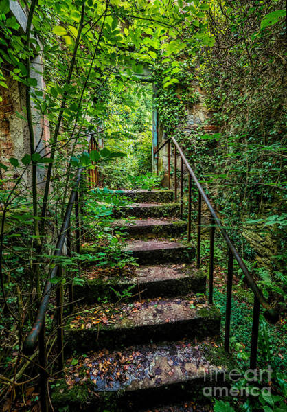 Abandonment Photograph - Mind Your Step by Adrian Evans