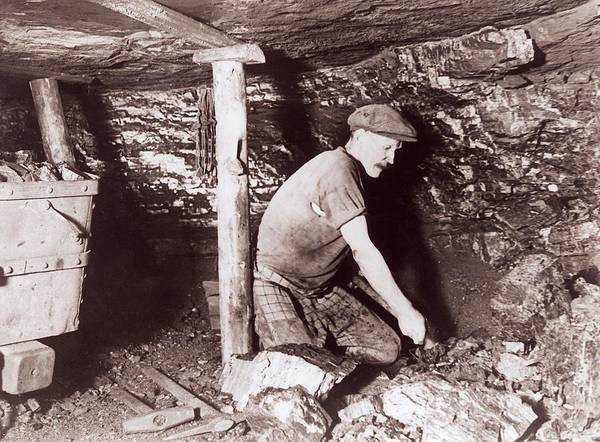 Fossil Fuel Photograph - Miner At Work by Crown Copyright/health & Safety Laboratory Science Photo Library