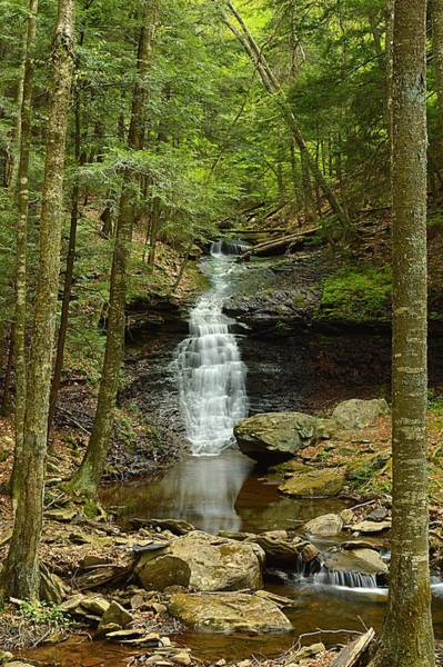 Sullivan County Photograph - Mineral Spring Falls #1 by Joel E Blyler