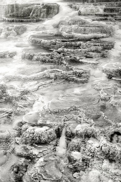 Photograph - Minerva Springs In Black And White Yellowstone National Park Wyoming by Dave Welling