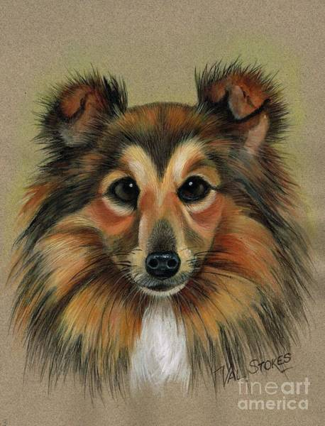 Painting - Miniature Collie by Val Stokes